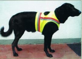 Hondensignaalvest