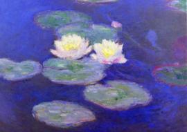 10 stuks poster op karton witte waterlelies Monet POS-0019 posters(20.8Cm / 29.5Cm)