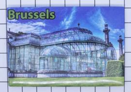 koelkastmagneet Brussels N_BX032