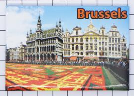 koelkastmagneet Brussels N_BX041