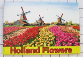 10 stuks koelkastmagneet  Holland 20.275