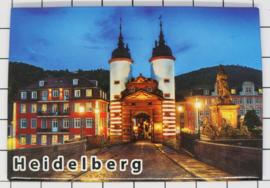 10 stuks koelkastmagneet Heidelberg N_DH002