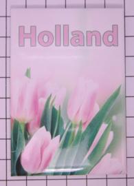 10 stuks  koelkastmagneet Holland   MAC:20.136