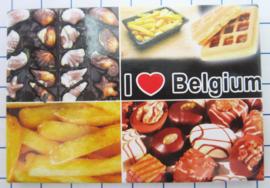 koelkastmagneten Belgium N_BD901