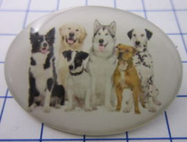 BRO527 Broche met honden van 6 verschillende rassen
