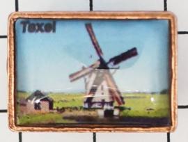 PIN_NH3.005 pins Texel