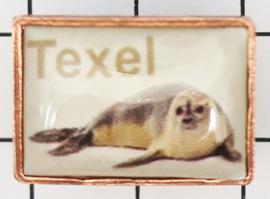 PIN_NH3.002 pin Texel