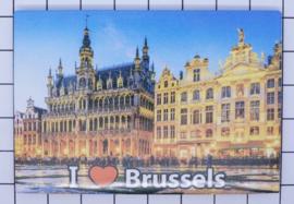 koelkastmagneet Brussels N_BX004