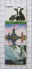 Holland  MAC 21.506a