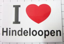 10 stuks koelkastmagneet I Love Hindeloopen  N_FR4.003