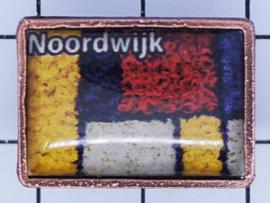PIN_ZH10.005 pin Noordwijk