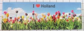 10 stuks koelkastmagneet Holland MAC:21.102