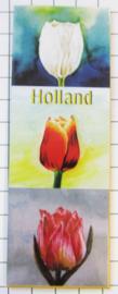 10 stuks koelkastmagneet Holland Tulpen MAC:21.101