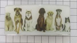 HAR 501 haarspeld rechthoek 8 cm, verschillende hondenrassen