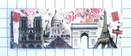 10 Magnettes Paris Mac:11.721