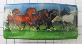 HAR 508 haarspeld rechthoek, witte paarden, 8 cm