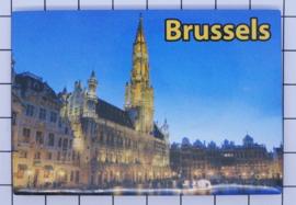 koelkastmagneet Brussels N_BX013