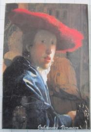 10 stuks koelkastmagneet Vermeer Holland mac 20.304