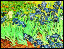 pak 25 posters (35.5 cm x  27.2 cm) POS205 Irissen Vincent van Gogh
