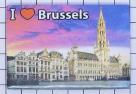 koelkastmagneet Brussels N_BX008
