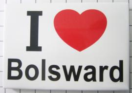 10 stuks koelkastmagneet I Love Bolsward  N_FR6.001