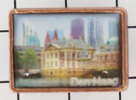 PIN_ZH3.154 Pin Den Haag