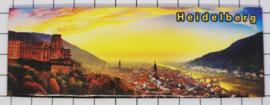 10 stuks koelkastmagneet Heidelberg P_DH0019
