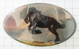 Haarspeld ovaal HAO 515, witte paarden, 8 cm