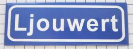 10 stuks koelkastmagneet  Ljouwert P_FR2.5001