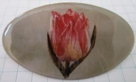 HAO 001 Haarpeld ovaal roze tulp geschilderd