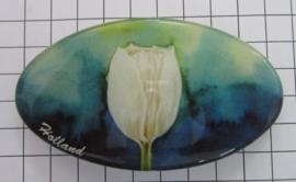 Haarspeld ovaal HAO 308 witte tulp blauwe achtergrond