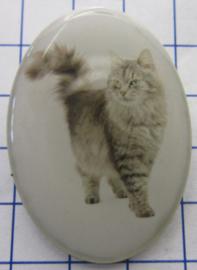 BRO529 broche kat