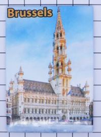 koelkastmagneet Brussels N_BX009