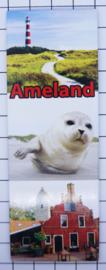 10 stuks koelkastmagneet  Ameland  P_FR9.0004
