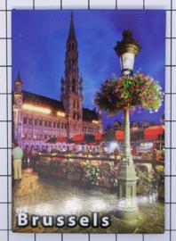 koelkastmagneet Brussels N_BX042