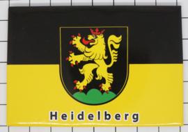 10 stuks koelkastmagneet Heidelberg N_DH009