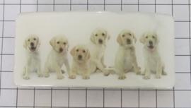 HAR 502 haarspeld rechthoek 8cm, witte hondenpups