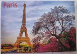 10 Magnettes  Paris    MAC:10.032