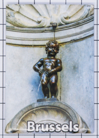 koelkastmagneet Brussels N_BX040