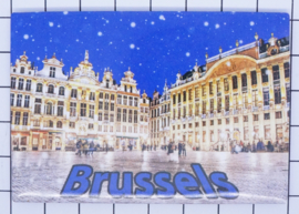 koelkastmagneet Brussels N_BX012