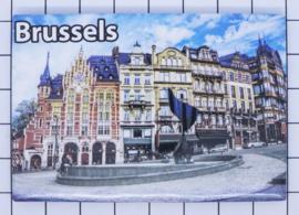koelkastmagneet Brussels N_BX023