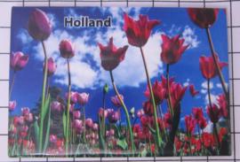 10 stuks  koelkastmagneet Holland   MAC:20.131