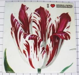 10 stuks Mega zeer grote koelkastmagneet Holland MEGA_V_20.101