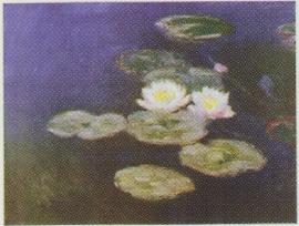 pak 50 stuks Kwaliteitsposters 35 x 45 cm Claude Monet - witte waterlelies