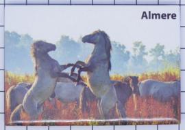 10 stuks koelkastmagneet Almere N_FL1.005