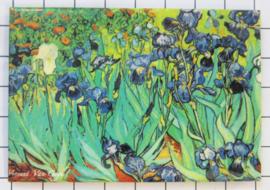 10 stuks koelkastmagneet Van Gogh MAC:20.411