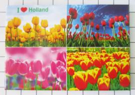 10 stuks  koelkastmagneet Holland   MAC:20.126