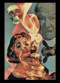 """""""Flame"""" Postcard"""