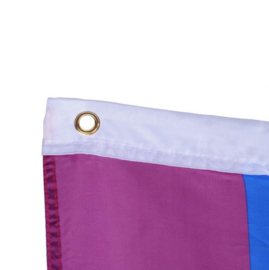Regenboog LGBTQ vlag gay pride LGBT rainbow flag vlaggen XL *groot*