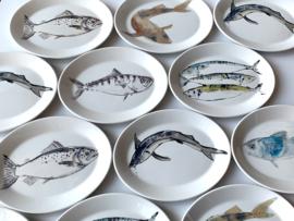 Set van 6 verschillende visborden